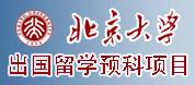 北京大学留学预科项目招生